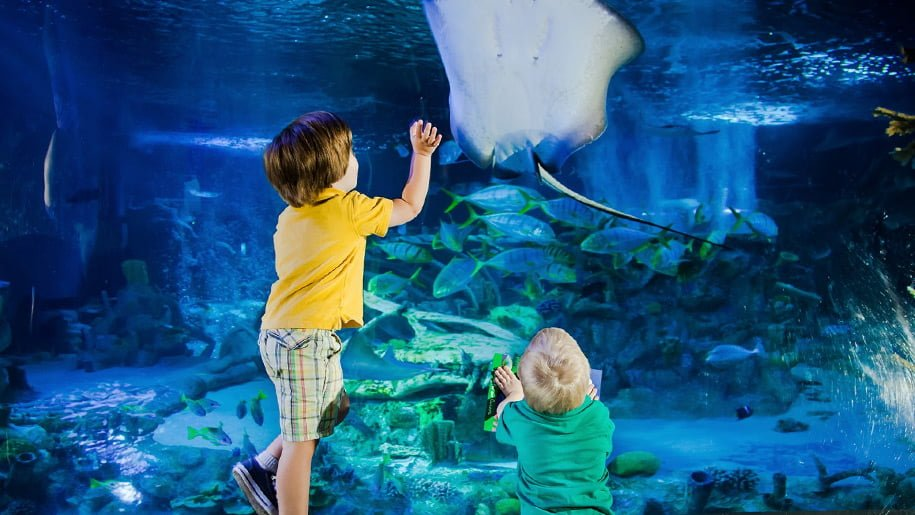 Two children reaching out for a stingray at the Blue Reef Aquariam in Newquay on a rainy day in Cornwall