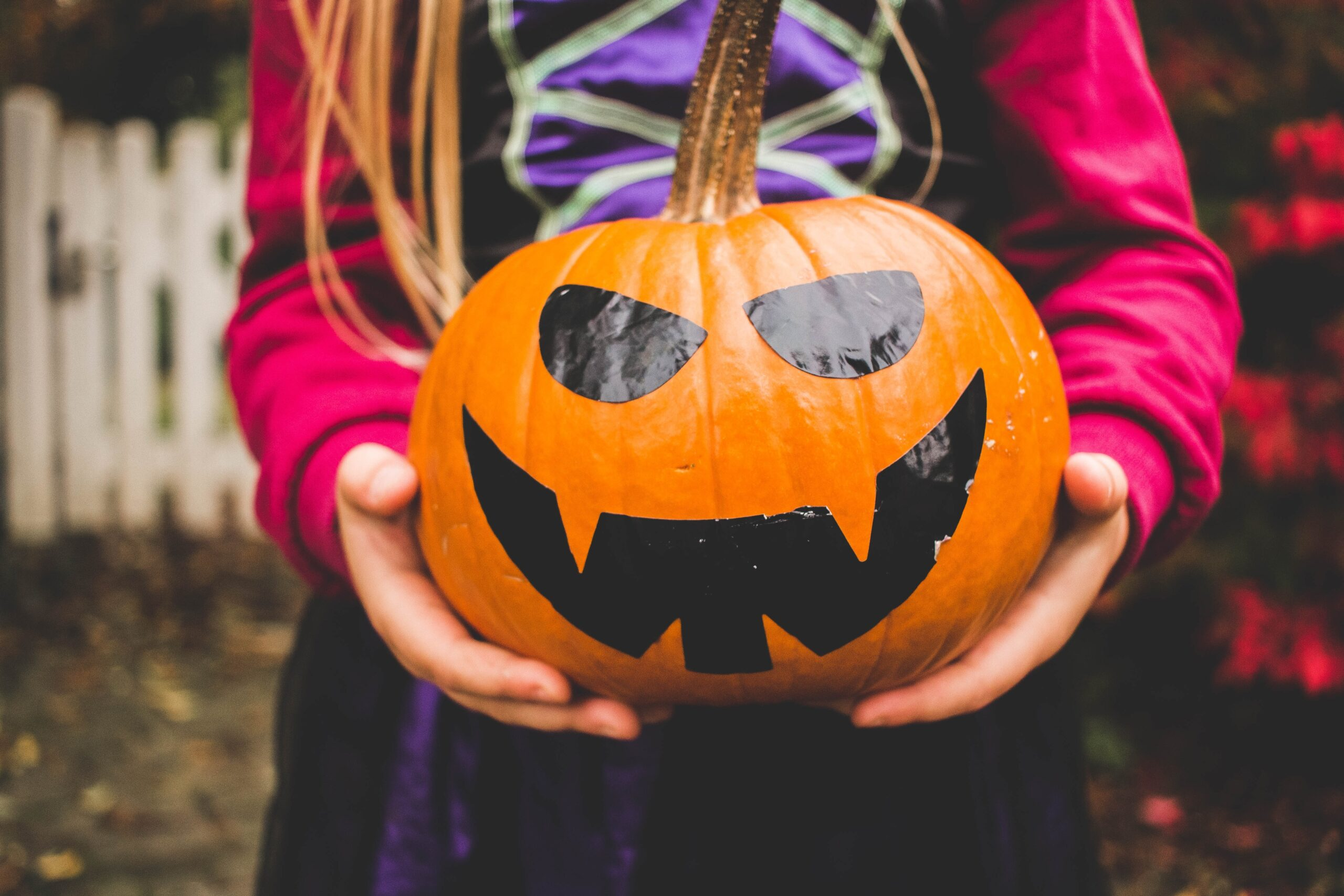 Child holding a pumpkin for October half term