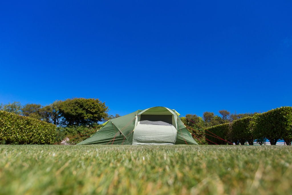 Green tent pitched between privacy hedges with bright blue sky