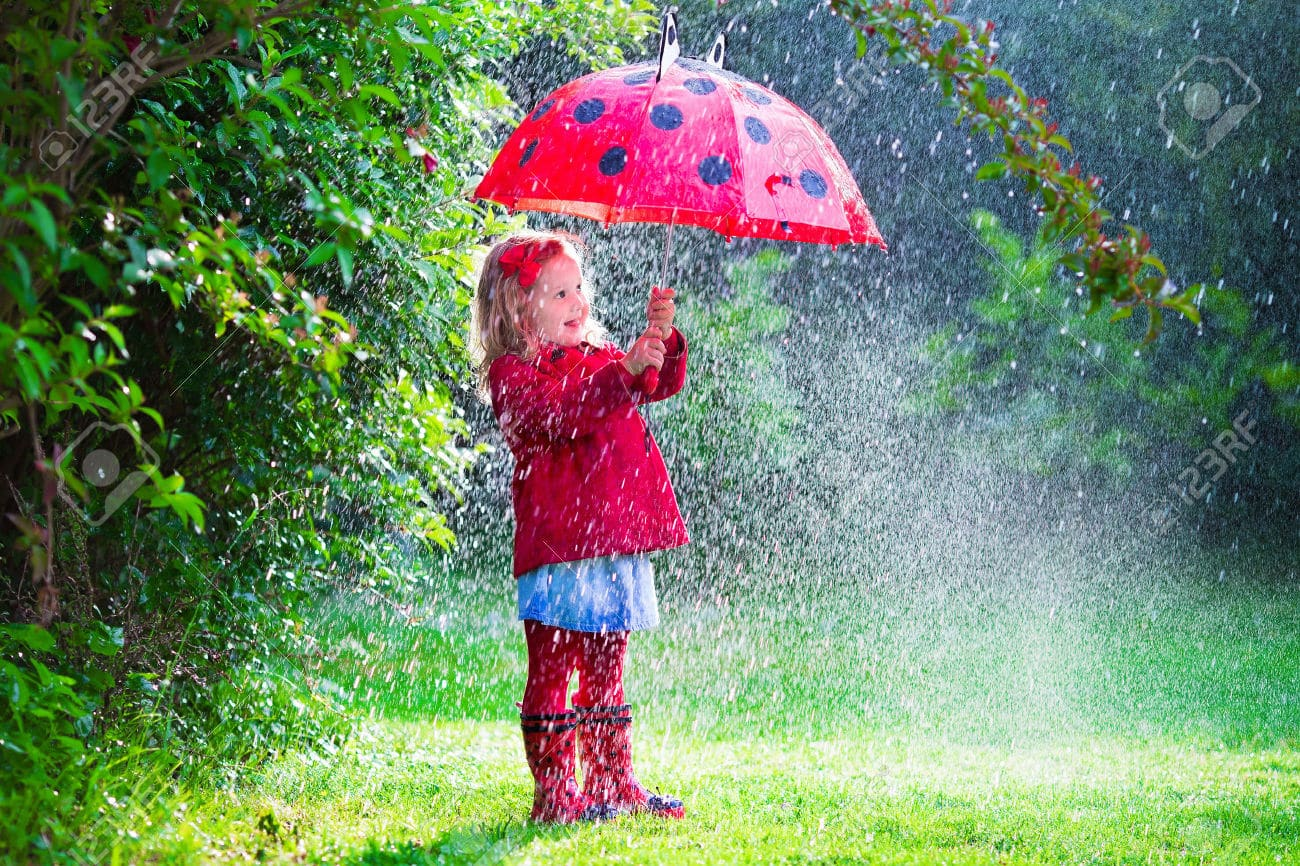 Rainy day activities near Polmanter St Ives